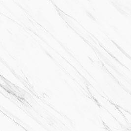 Ploeren Pulido 120x120