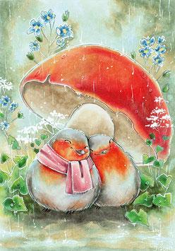 Rotkehlchen unter dem Pilz