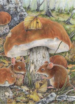 (NEU) Mäuse unter dem Pilz
