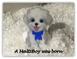 "HundeMotivHaarSpange  "" Malteser Bub """