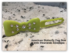 "Kunststoff HundehaarSpange/ SWK  "" Glamour American Butterfly Dog Bows Kiwi   """