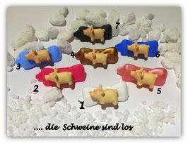HundeHaarSpange  Silvester Highlight No 5a   die Schweine sind los....