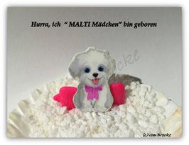"HundeMotivHaarSpange  "" Malteser Mädel """