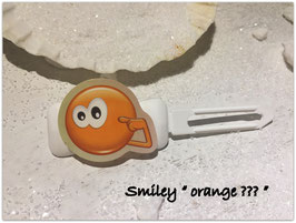 "Emotion / Smiley HundeHaarSpange  "" Orange ?????  """