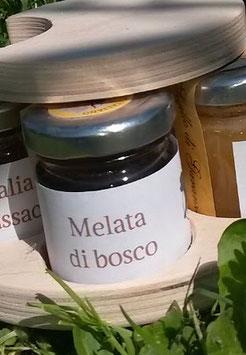 Melata di Bosco Italiana