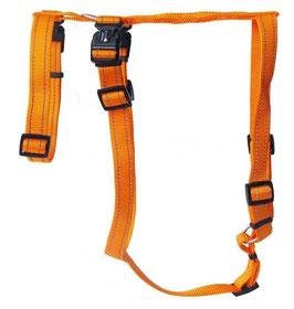 Harnais Orange XL