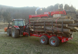 Brennholz-ungespalten
