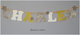 Guirlande murale *A personnaliser* Modèle CHARLES