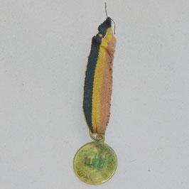 Albert Ier - Roi des Belges - Souvenir de la Fête - Miniature