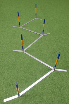 Hoopers Agility Slalom - Hoopers Slalom im Callieway®  Trichterstyle