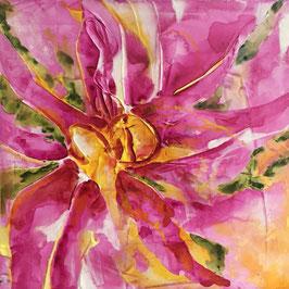 Blütenallerlei 1