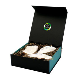 Large Box 3 XL Oyster Candles