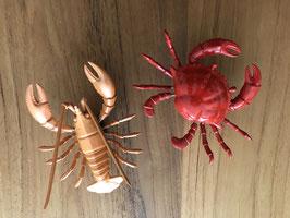 Wiebelmagneten, krab en kreeft in leuk doosje verpakt