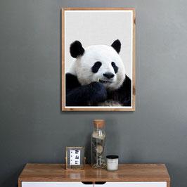 Verträumter Panda