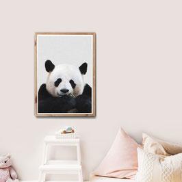 Huhu Panda