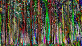 Black Forest 3
