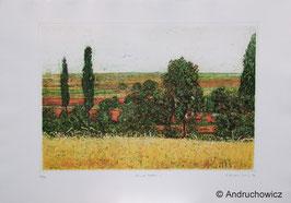 Dietlinde Andruchowicz - Lauter Felder