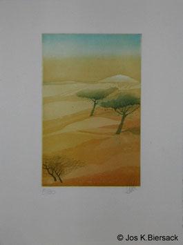 Jos K. Biersack - Afrikanischer Baum 2