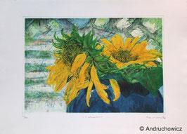 Dietlinde Andruchowicz - S.Blumen