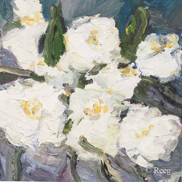 Rüdiger Reeg - Blumen 0120