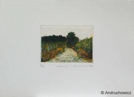 Dietlinde Andruchowicz - Weinweg