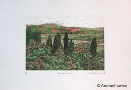 Dietlinde Andruchowicz - Pappellandschaft