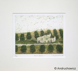 Dietlinde Andruchowicz - Franz. Oliven