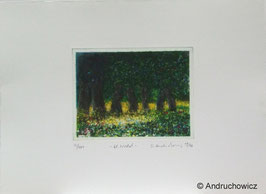 Dietlinde Andruchowicz - Kleiner Wald