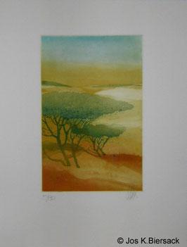 Jos K. Biersack - Afrikanischer Baum 1