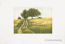Dietlinde Andruchowicz - Zu den Apfelbäumen