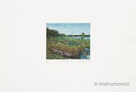 Dietlinde Andruchowicz - Seelandschaft