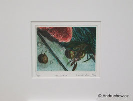 Dietlinde Andruchowicz - Pane Olive