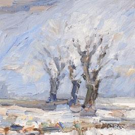 Rüdiger Reeg - Winter am Kühkopf (5784)