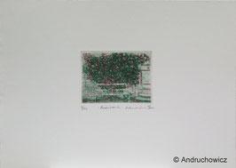 Dietlinde Andruchowicz - Rosenbank