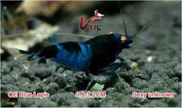 OE Black King Kong Randome Type (Black/Blue Lapis)