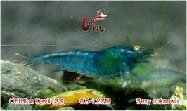 SS Grade of OE Blue Devils
