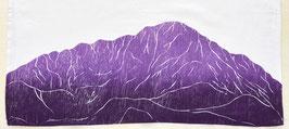Pikes Peak kitchen towel *14er*