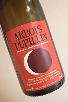 2017 Arbois Pupillin rouge Ploussard
