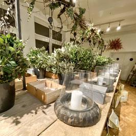 Steineichenkranz mit Windlicht und weihnachtlicher Dekoration  Workshop am 13. November  von  17.00 - 20:00 Uhr  !