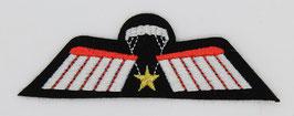 Para wing Brevet C - DT versie