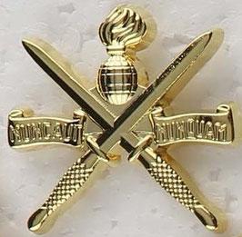Korps Commandotroepen kraagspiegelembleem set