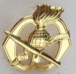 Korps Commandotroepen Baret embleem