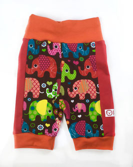 Shorts Elefantentanz