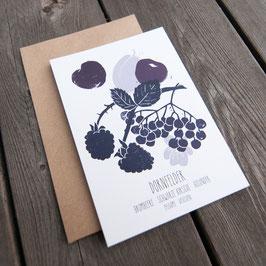 DORNFELDER // Weinaromen Postkarte