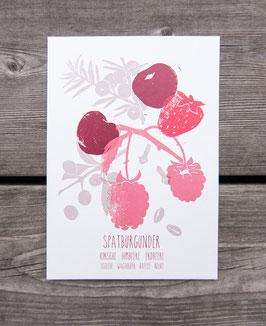 SPÄTBURGUNDER // Weinaromen Postkarte