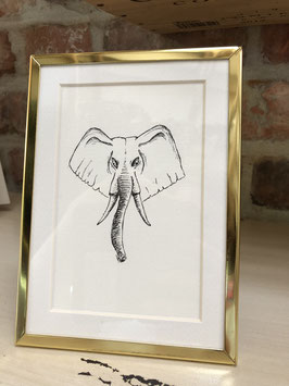 Inkttekening olifant zw/w met kader / ink drawing elephant b/w with frame