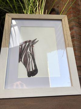 Inkttekening zebra kleur (klein) met kader / Ink drawing zebra color (small) with frame)