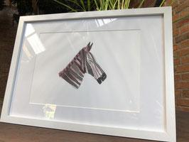Inkttekening zebra kleur (groot) met kader / Ink drawing zebra color (large) with frame