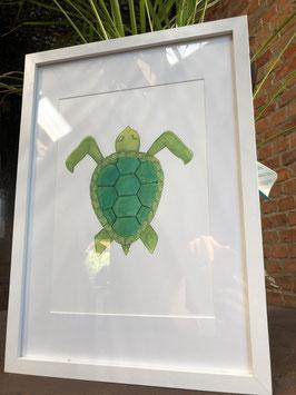 Inttekening schildpad kleur (groot) met kader / Ink drawing turtle color (large) with frame