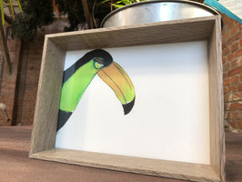Inkttekening toekan kleur (klein) met kader / Ink drawing tucan color (small) with frame